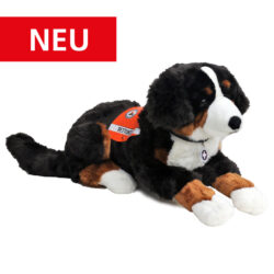 R1 Berner Sennenhund 70cm_NEU